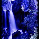 blue moon wolf by CheyenneLeslie Hurst