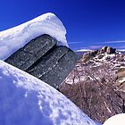 Alpine Australia by Travis Easton