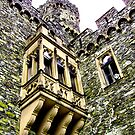 Reinstein castle by Efi Keren