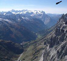 Alps by Efi Keren