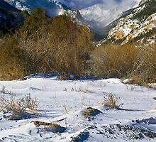 High Country Winter by John  De Bord Photography