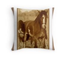 buddies2 Throw Pillow