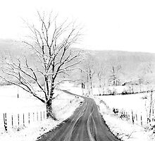 McGee Cove Road by © Joe  Beasley IPA