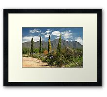 Franschhoek, Western Cape, South Africa Framed Print