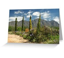 Franschhoek, Western Cape, South Africa Greeting Card