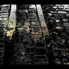 Dark Reflections by David Edwards