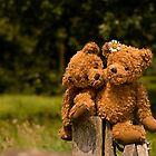 Bear couple in love by PhotoAmbiance