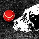 Red Ball by © Joe  Beasley IPA