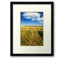 Poppies and cloud Framed Print
