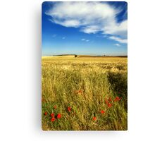 Poppies and cloud Canvas Print