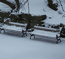 Benches in Winter by JLPhotos