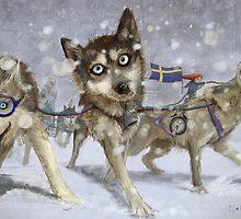 """Ammarnäs""  Illustration M.Konecka for ""Destin de carte postale"" by Eric Tchijakoff"