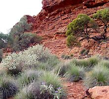 Kings Canyon 2 by Ian Porter