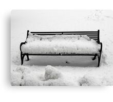 SNOW SCENE 8 Canvas Print