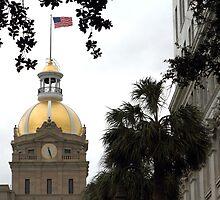 Savannah Non-Capitol Building by Carol Bailey White