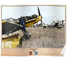 Messerschmitt BF 109E3 and Henschel HS 123A Poster