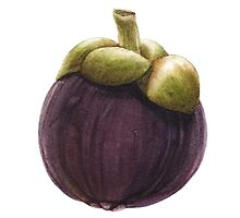 Mangosteen by Denise Ramsay