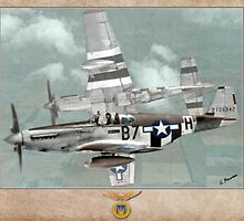 North American P-51 of the 361st Fighter Group by A. Hermann