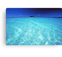 divine waters Canvas Print