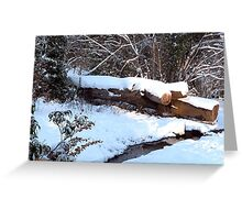 SNOW SCENE 9 Greeting Card