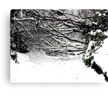 SNOW SCENE 5 Canvas Print