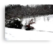 SNOW SCENE 6 Canvas Print