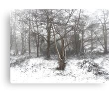 SNOW SCENE 7 Canvas Print