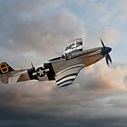 Jumpin Jacques - P51 Mustang by © Steve H Clark