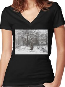 SNOW SCENE 7 Women's Fitted V-Neck T-Shirt