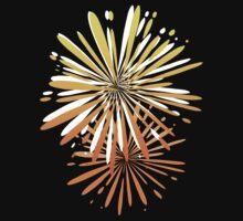 Fireworks by webgrrl