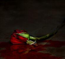 Happy Un-Valentine's Day by Sharon Hammond