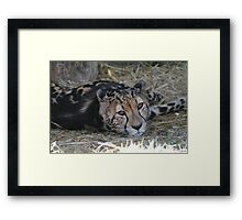 Resting after Supper Framed Print