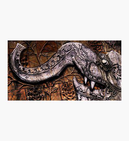 Stonework mural, Australia Zoo Photographic Print