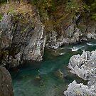 Goblin's Gate - Elwah River - Olympic N. P. by Mark Heller