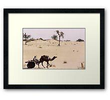 Thar Desert, Rajasthan, India Framed Print