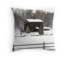 Devils River Grist Mill Throw Pillow