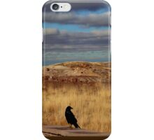 Raven at the Petrified Forest iPhone Case/Skin