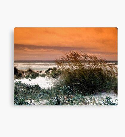 Sand Landscape Canvas Print