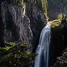 Clear Creek Falls - Gifford Pinchot N.F. by Mark Heller