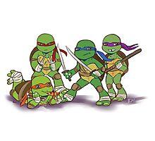 Little Mutant Ninja Turtles Photographic Print