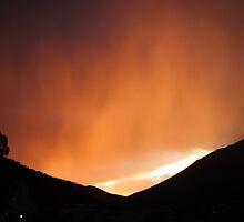 Sky Alight by Sam Atwood