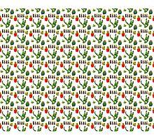 Cactus Print Photographic Print