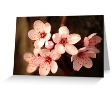 Blossoming Crabapples Greeting Card