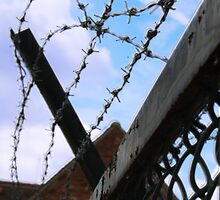 Barbed Sky by Helen Patmore