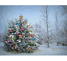 Decorated Winter Photographic Print