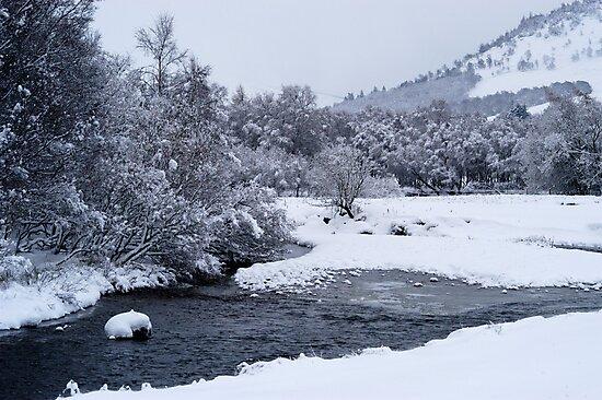 winter scene 2 by miclile
