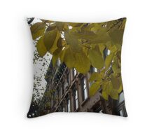 brownstone fall colors Throw Pillow