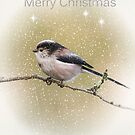Merry Christmas  by M.S. Photography/Art