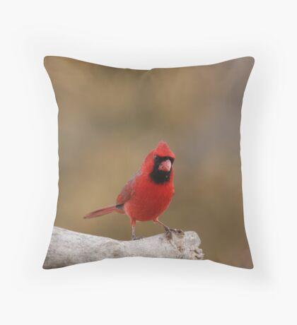 bright red cardinal Throw Pillow