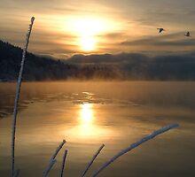 Winter Waters by Ravenor